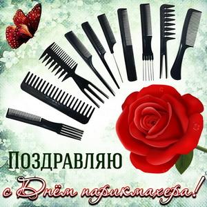 Картинка с расчёсками и розой на День парикмахера