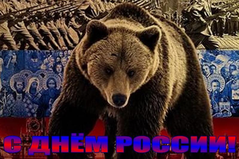 Открытка, медведь, цвета флага