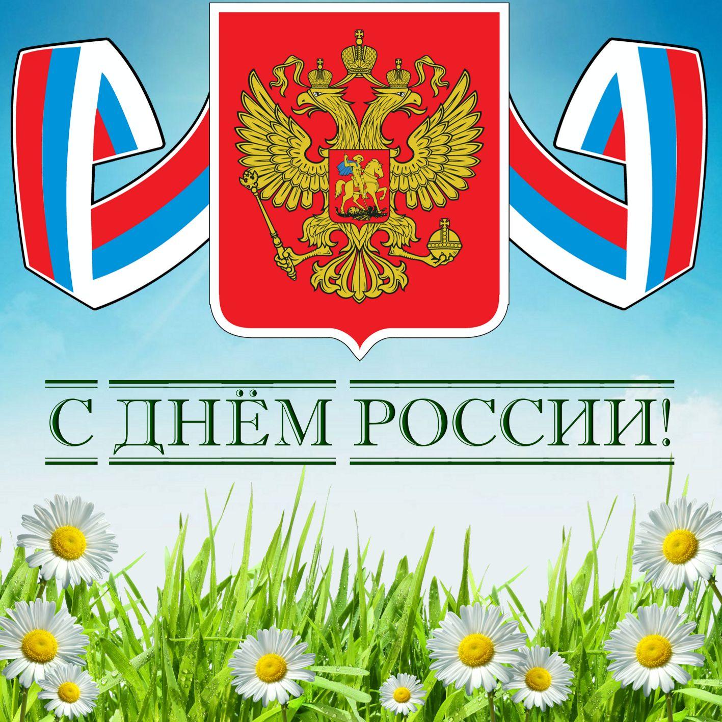Герб России над ромашковым полем