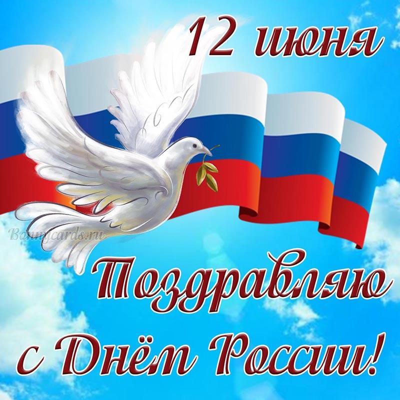 Открытка - поздравляю с Днём России на фоне голубя и флага