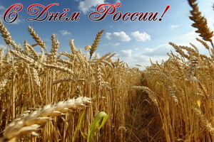 Открытка с Днём России, пшеница, поле