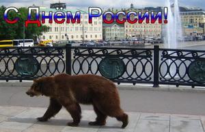 Открытка, медведь на улице