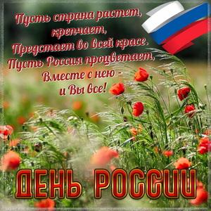 Картинка с красивым пожеланием на День России
