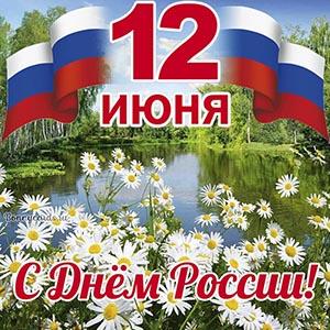Красивая картинка на День России с ромашками