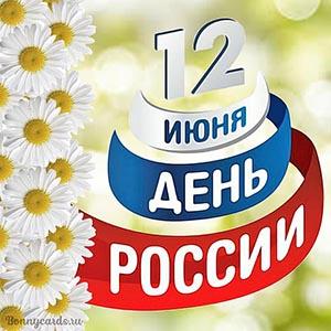 Милая открытка с ромашками на День России 12 июня