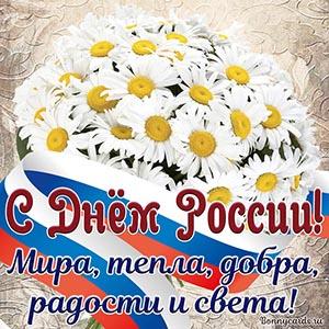 Прекрасная картинка на День России с цветами