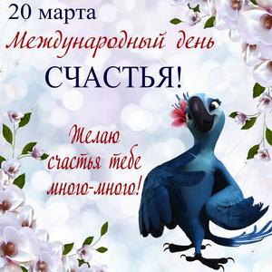 Мультяшный попугай желает много счастья