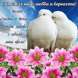 Влюбленные голубки на фоне цветов