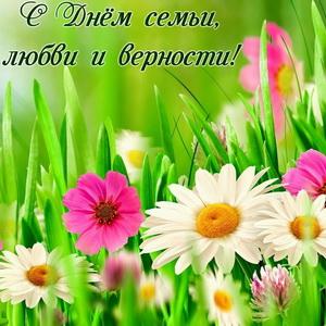 Открытка с цветами на День семьи