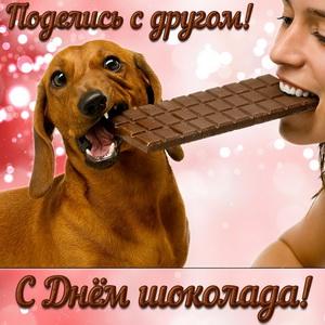 Шоколадка на двоих с собачкой