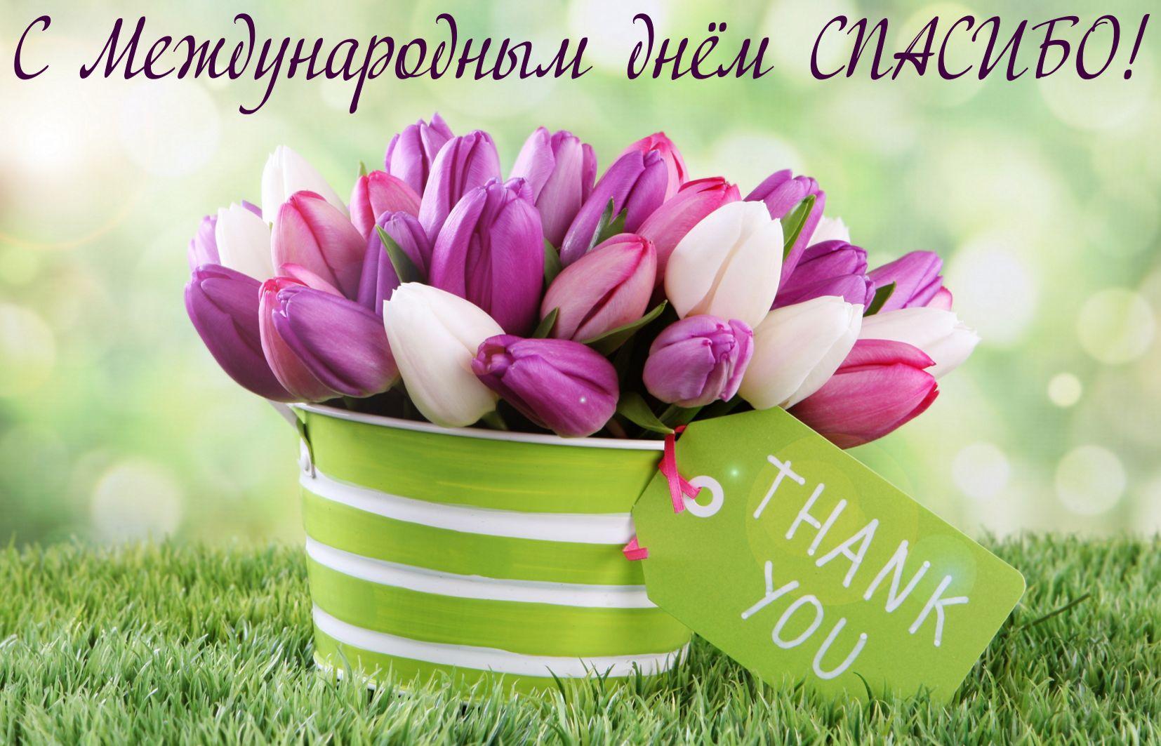 Открытка на международный день спасибо - корзина с разноцветными тюльпанами