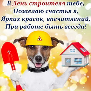 Собачка в каске желает счастья