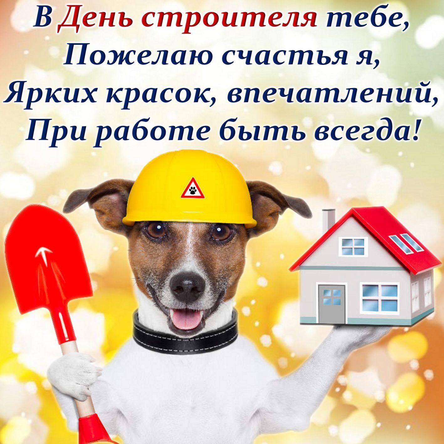 Открытка на День строителя - собачка в каске желает счастья