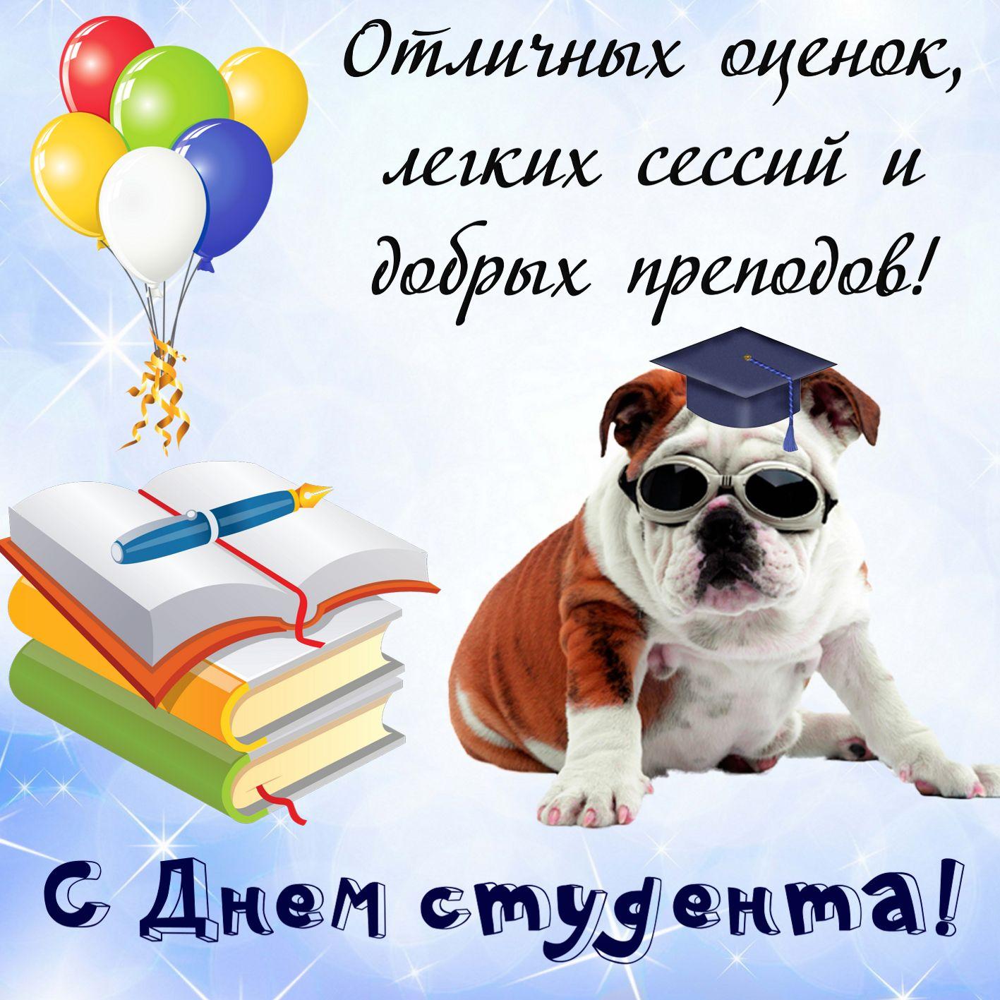 Умная собачка в очках и пожелание