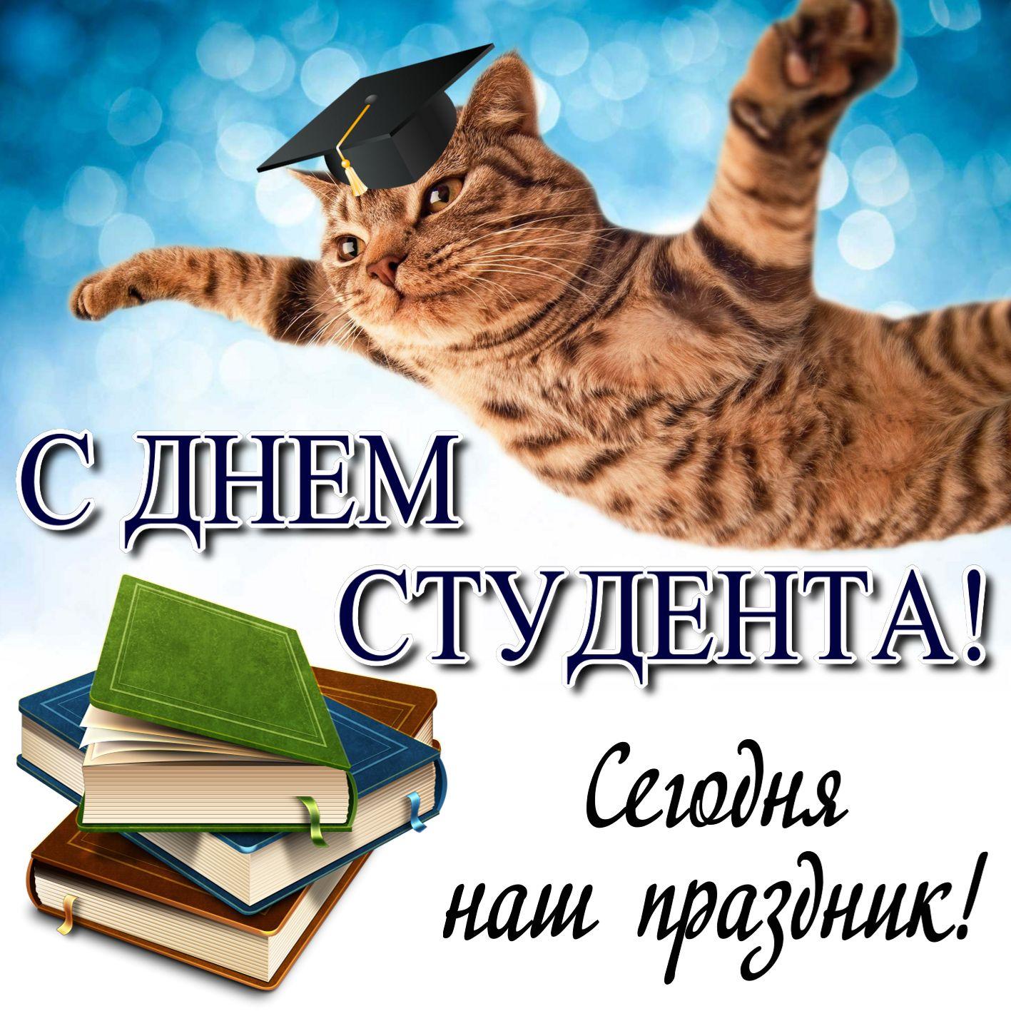Радостный котик поздравляет студентов