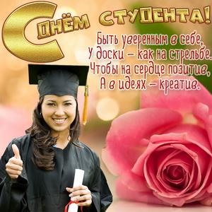 Красивая роза и пожелание на День студента