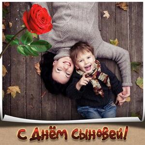 Яркая картинка с розой на День сыновей