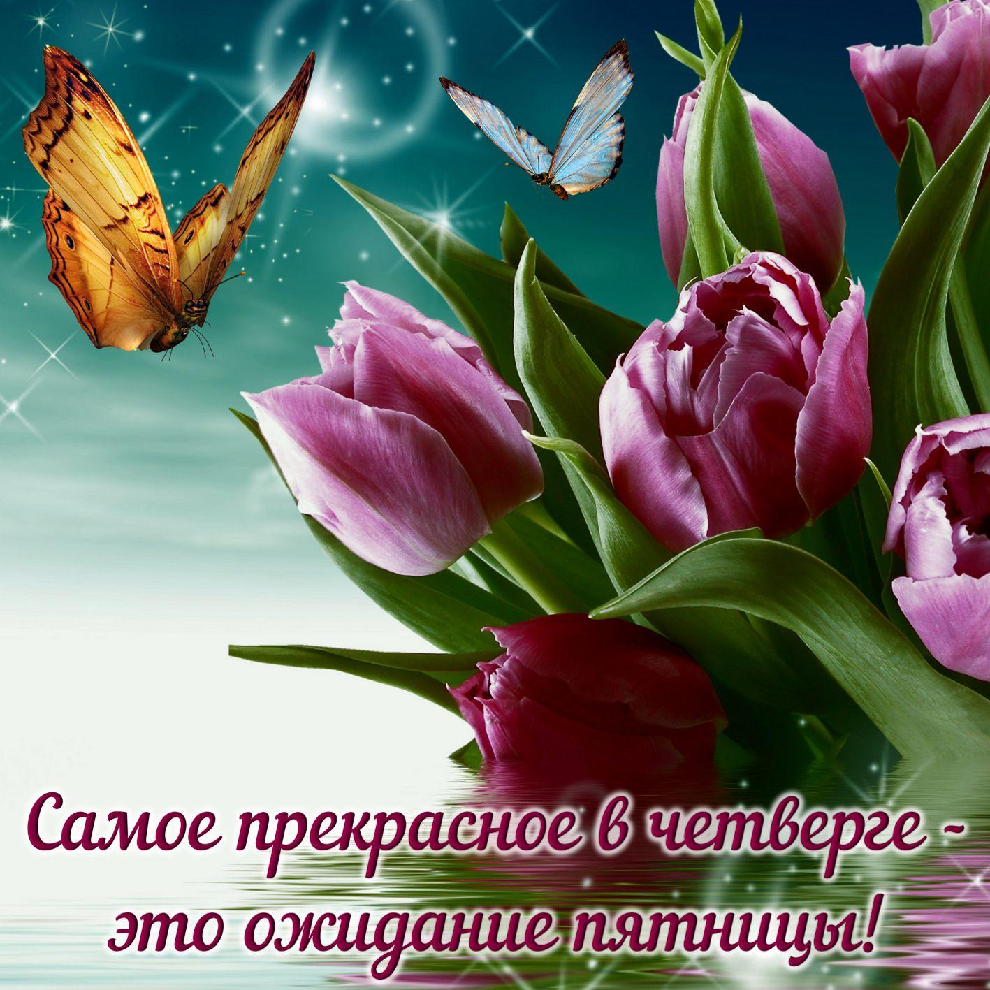 Открытка с тюльпанами на красивом фоне на четверг