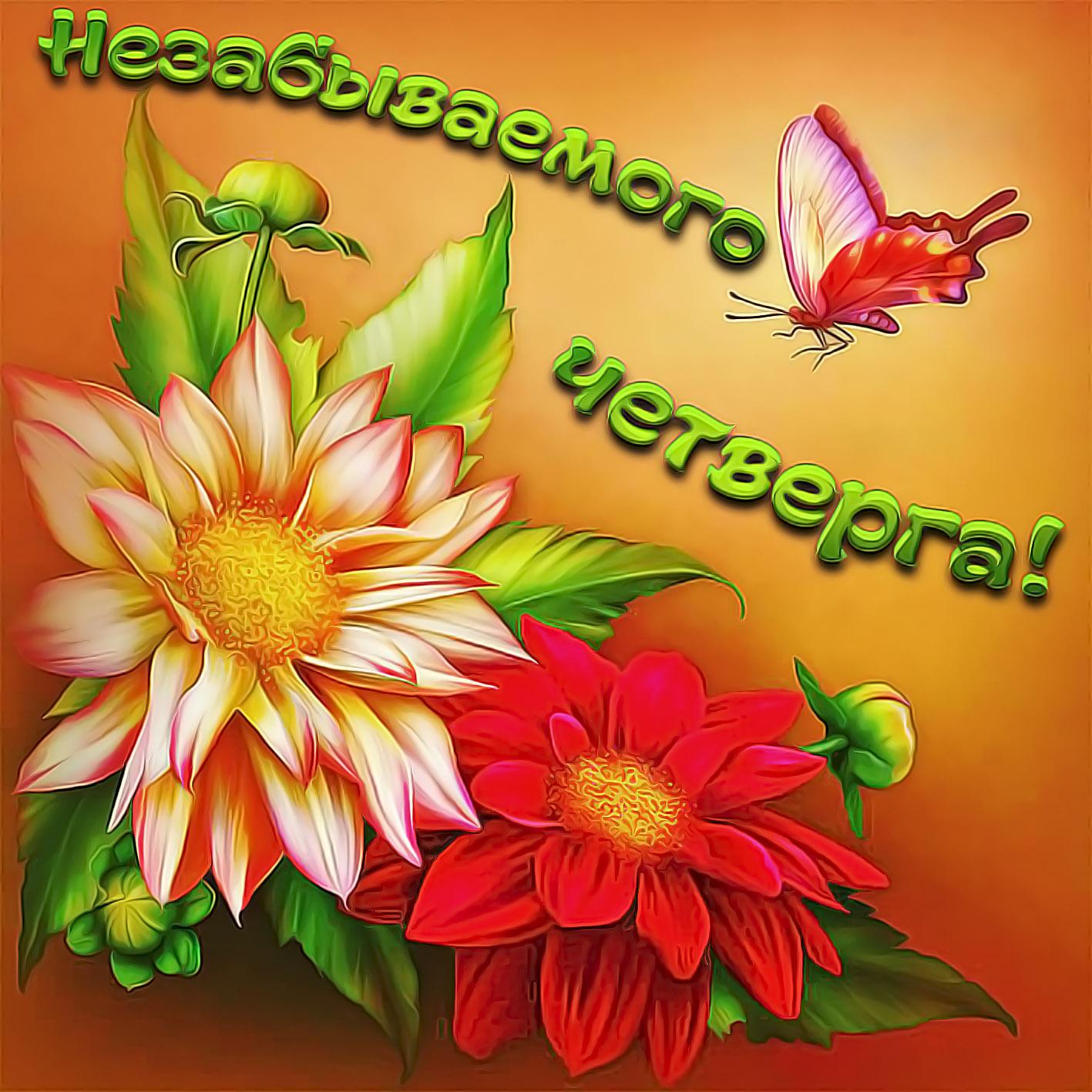 Картинка с красивыми, яркими цветами на четверг