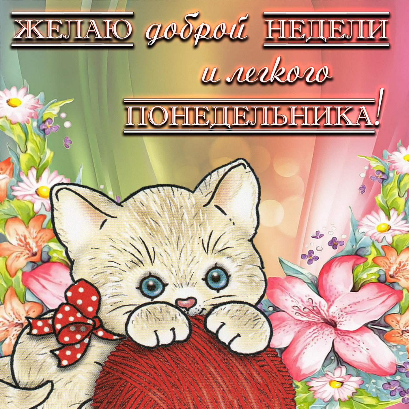 Открытка на понедельник - котёнок с клубком среди цветочков