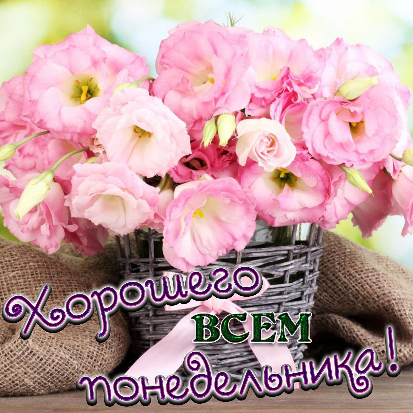 Марта открытка, картинки с цветами просто доброе утро понедельника