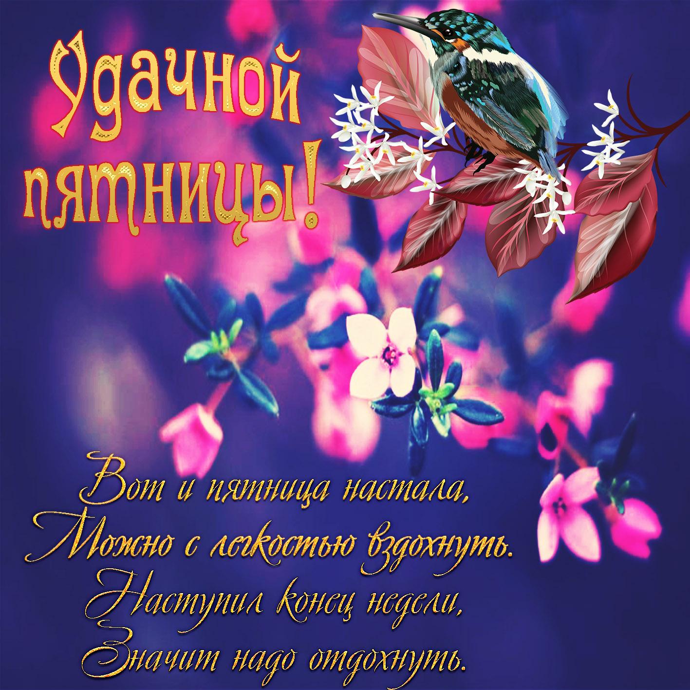 открытка отличной пятницы