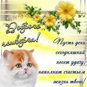 Милый котик желает доброго четверга