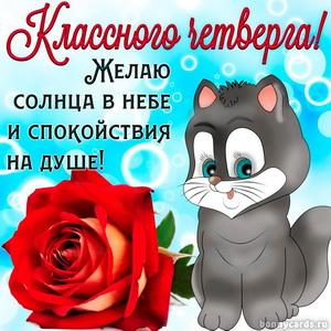 Картинка с розой и котиком желающим классного четверга