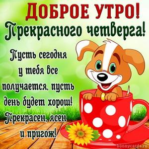 Картинка с милой собачкой желающей прекрасного четверга