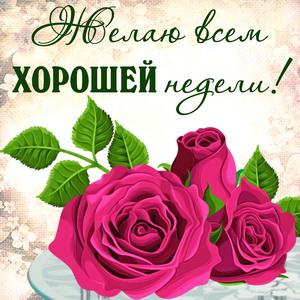 Розовые розочки и пожелание хорошей недели