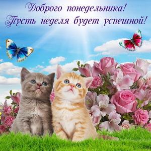 Милые котята на фоне розовых роз