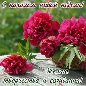 Открытка к началу новой недели с цветами