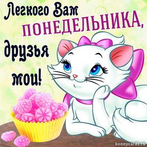 Картинка с милой кошечкой и пожеланием лёгкого понедельника