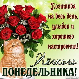 Открытка на понедельник с букетом красных роз и котиком