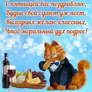 Серьезный котик поздравляет с пятницей