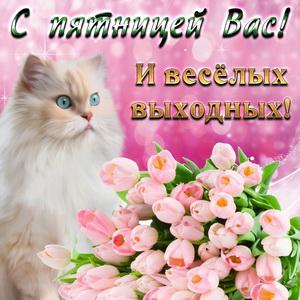 Милый котик и букет нежных роз