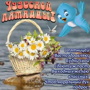 Картинка с птичкой и корзиной цветов