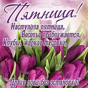 Открытка с тюльпанами и оригинальным пожеланием к пятнице