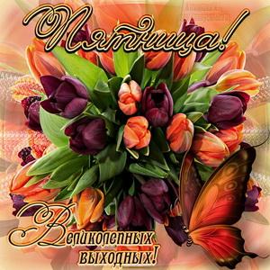Открытка на пятницу с букетом тюльпанов и бабочкой