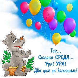 Картинка с волком и воздушными шариками