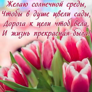 Открытка с тюльпанами и пожеланием к среде