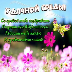 Открытка с бабочкой и милым пожеланием