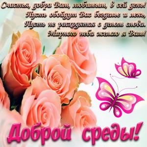 Пожелание доброй среды на фоне роз