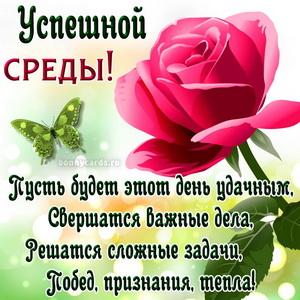 Открытка с розой и красивым пожеланием успешной среды