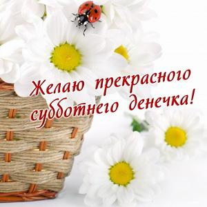 Желаю прекрасного субботнего денечка!