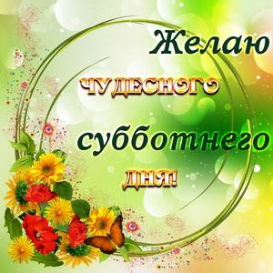 Картинка с цветами в красивом оформлении