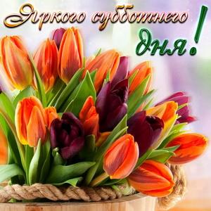 Открытка с разноцветными тюльпанами