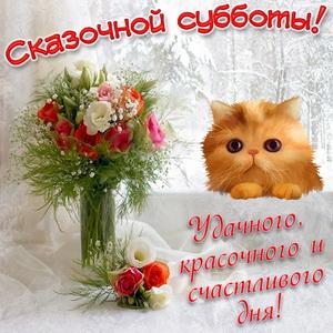 Картинка с котиком и букетом цветов