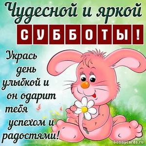 Картинка с пожеланием чудесной субботы и кроликом