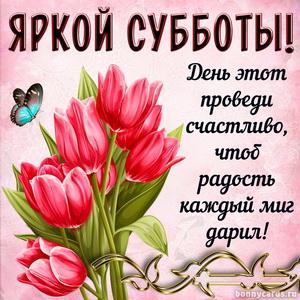 Букет тюльпанов и красивое пожелание яркой субботы